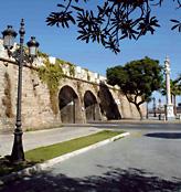 Barrio de San Carlos