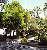 Alameda de Apodaca