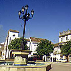 Ruta del toro - Los Barrios