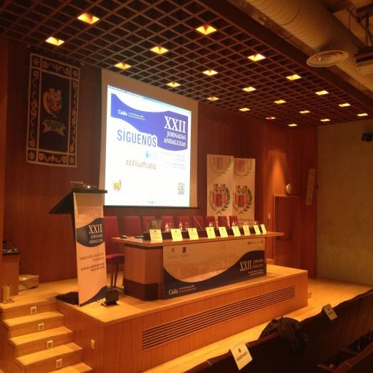 Sala de Conferencias 3