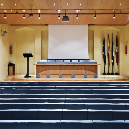 Sala de Conferencias 1